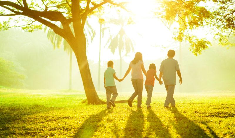 Immunsystem stärken, davon profitieren Kinder