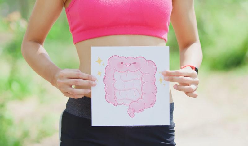 Disbiosis – Cuando los intestinos se desequilibran