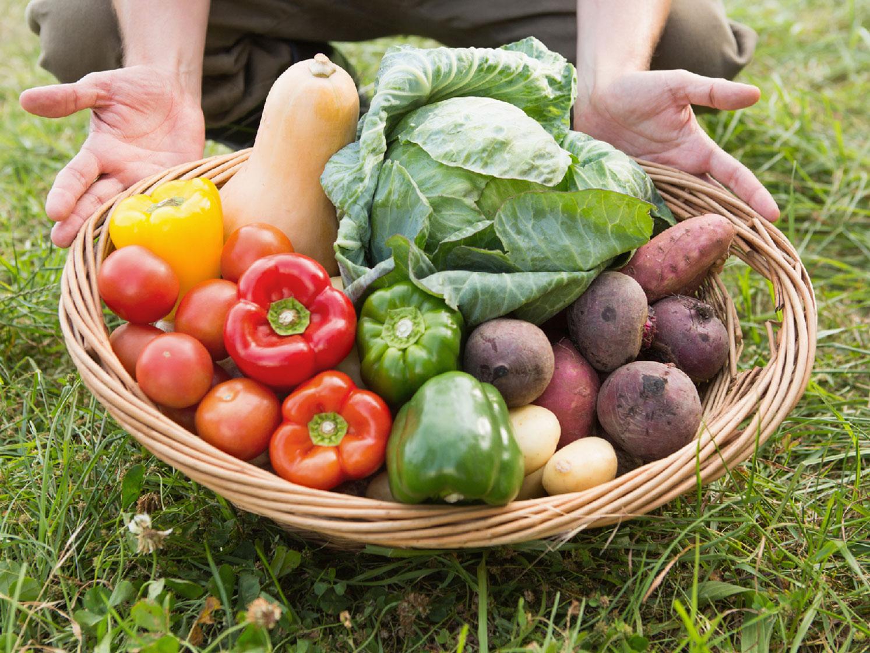 Verdauung anregen Tipp 2 frisches Obst und Gemüse