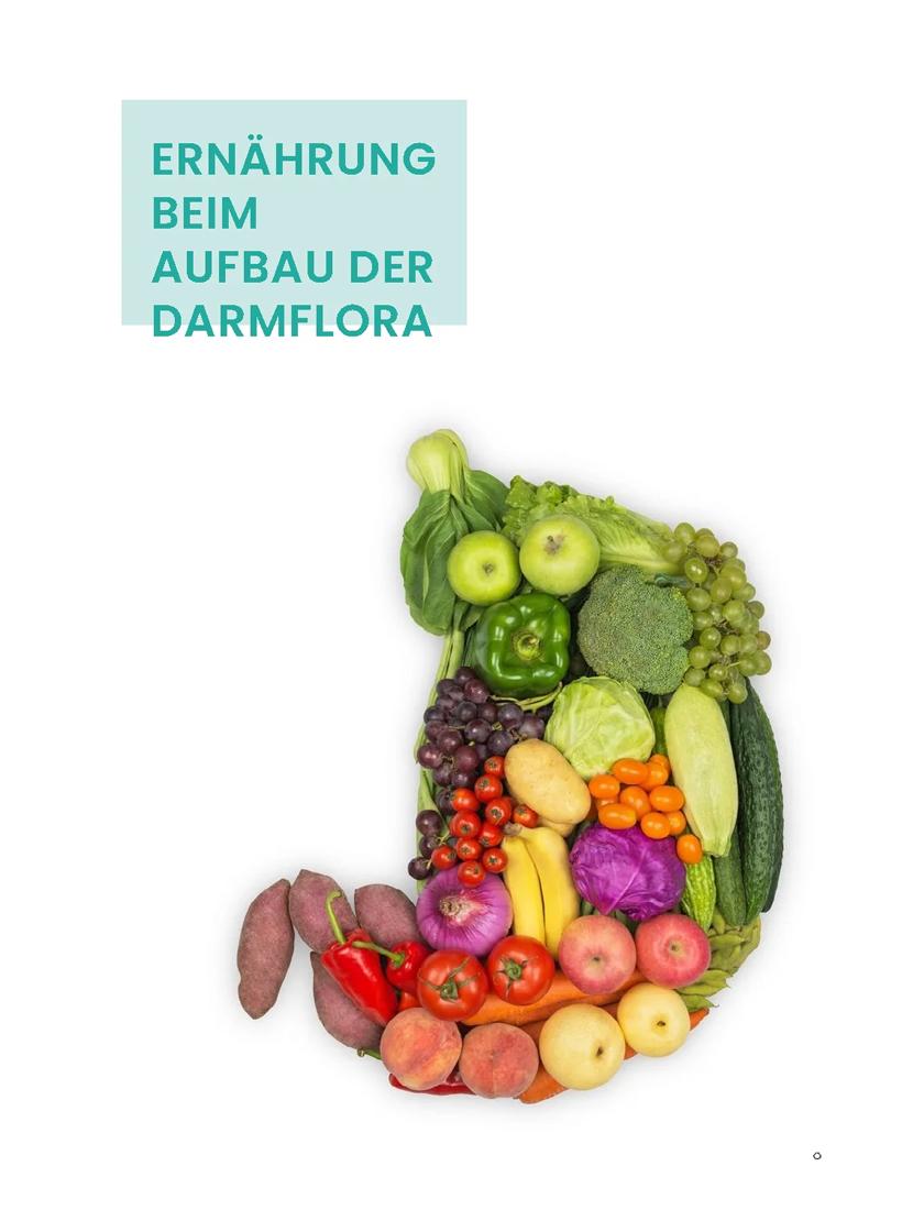 eBook Darmgesunde Ernährung Seite 2